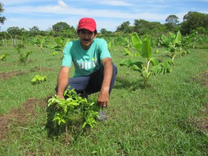 Francisco Novoa, one of the farmers participating in the project, with his citrus and plantain trees.